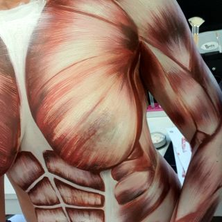 Body schmink studio working process torso human anatomy beek en donk logo