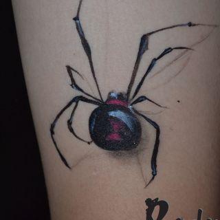 Body schminkstudio black spider3d